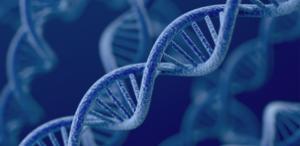 Teoría sintética sobre el desarrollo de lacompetencia